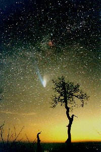 A photo of comet Hale-Bopp